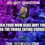 Do not question the elevated one | WHEN YOUR MOM ASKS WHY YOU'RE ON THE FRIDGE EATING COOKIES | image tagged in do not question the elevated one | made w/ Imgflip meme maker