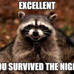 Evil Plotting Raccoon Meme | EXCELLENT YOU SURVIVED THE NIGHT | image tagged in memes,evil plotting raccoon | made w/ Imgflip meme maker