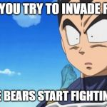 Surprized Vegeta Meme | WHEN YOU TRY TO INVADE RUSSIA BUT THE BEARS START FIGHTING BACK | image tagged in memes,surprized vegeta | made w/ Imgflip meme maker