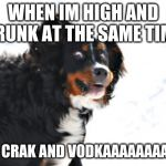 Crazy Dawg Meme | WHEN IM HIGH AND DRUNK AT THE SAME TIME I LIKE CRAK AND VODKAAAAAAAAAAAA | image tagged in memes,crazy dawg | made w/ Imgflip meme maker