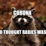 Evil Plotting Raccoon Meme | CORONA AND U THOUGHT RABIES WAS BAD | image tagged in memes,evil plotting raccoon | made w/ Imgflip meme maker
