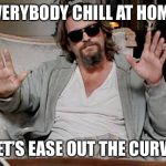 I got this | EVERYBODY CHILL AT HOME LET'S EASE OUT THE CURVE | image tagged in i got this | made w/ Imgflip meme maker