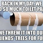 No More Toilet Paper | BACK IN MY DAY, WE HAD SO MUCH TOILET PAPER WE THREW IT INTO OUR FRIENDS' TREES FOR FUN. | image tagged in no more toilet paper | made w/ Imgflip meme maker