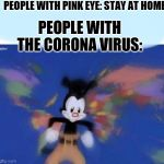 Corona Travel | PEOPLE WITH PINK EYE: STAY AT HOME PEOPLE WITH THE CORONA VIRUS: | image tagged in united states  canada | made w/ Imgflip meme maker
