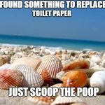 SAVE A TREE | I FOUND SOMETHING TO REPLACE TOILET PAPER JUST SCOOP THE POOP | image tagged in sea shells,coronavirus | made w/ Imgflip meme maker