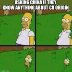 Homer Simpson in Bush - Large | ASKING CHINA IF THEY KNOW ANYTHING ABOUT CV ORIGIN | image tagged in homer simpson in bush - large | made w/ Imgflip meme maker