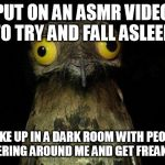 Weird Stuff I Do Potoo Meme | PUT ON AN ASMR VIDEO TO TRY AND FALL ASLEEP WAKE UP IN A DARK ROOM WITH PEOPLE WHISPERING AROUND ME AND GET FREAKED OUT | image tagged in memes,weird stuff i do potoo | made w/ Imgflip meme maker