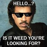 Lionel Richie Hello | HELLO...? IS IT WEED YOU'RE LOOKING FOR? | image tagged in lionel richie hello | made w/ Imgflip meme maker
