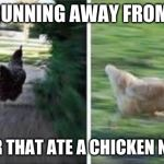 running chicken | ME RUNNING AWAY FROM MY OWNER THAT ATE A CHICKEN NUGGET | image tagged in running chicken | made w/ Imgflip meme maker