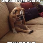 bulldogsad | AFTER LISTENING TO, LINDA, HIS HUMAN, FOR 12 DAYS WHILE IN QUARANTINE AS SHE COMPLAINED FOR HOURS ON END ... SPARKY REALIZED HE WAS NOT CUT  | image tagged in bulldogsad | made w/ Imgflip meme maker