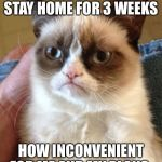 Grumpy Cat Meme | OH SO YOU HAVE TO STAY HOME FOR 3 WEEKS HOW INCONVENIENT FOR ME AND MY PLANS | image tagged in memes,grumpy cat | made w/ Imgflip meme maker