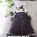 Fat Cat Meme | WHEN CAROLE STOPS BY WITH MYSTERY MEAT IN SARDINE OIL | image tagged in memes,fat cat | made w/ Imgflip meme maker