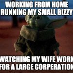 Baby Yoda | WORKING FROM HOME RUNNING MY SMALL BIZZY WATCHING MY WIFE WORK FOR A LARGE CORPERATION | image tagged in baby yoda | made w/ Imgflip meme maker