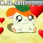Hamtaro Meme | I'M...SO...CUTE!!!!!!!!!!!!!!! | image tagged in memes,hamtaro | made w/ Imgflip meme maker