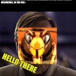 these murder hornets tho... | THE ENTIRE WORLD : OOF ! THE COVID PANDEMIC IS OVER ! 2020 SUCKS !    MEANWHILE, IN THE USA : HELLO THERE | image tagged in hello there,2020,murder hornet | made w/ Imgflip meme maker
