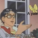 is this butterfly | Me in LockDown Is this nap time? A yawn | image tagged in is this butterfly,quarantine,lockdown,nap | made w/ Imgflip meme maker