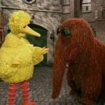 Big Bird And Snuffy meme