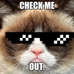 Grumpy Cat Not Amused Meme Generator - Imgflip