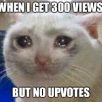All views... No upvotes... | WHEN I GET 300 VIEWS BUT NO UPVOTES | image tagged in sad cat,upvotes | made w/ Imgflip meme maker