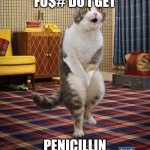 Gotta Go Cat Meme | WHERE THE FU$# DO I GET PENICILLIN ON A SUNDAY? | image tagged in memes,gotta go cat | made w/ Imgflip meme maker