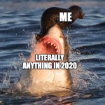 Travelonshark Meme | ME LITERALLY ANYTHING IN 2020 | image tagged in memes,travelonshark | made w/ Imgflip meme maker