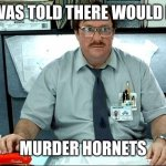 Murder Hornets Story Disappointment | I WAS TOLD THERE WOULD BE MURDER HORNETS | image tagged in memes,i was told there would be,murder hornet,disappointment | made w/ Imgflip meme maker