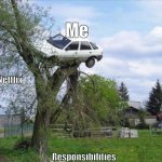 Secure Parking Meme | Me Responsibilities Netflix | image tagged in memes,secure parking | made w/ Imgflip meme maker