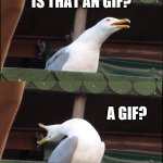 Inhaling Seagull Meme | WHATS THAT? IS THAT AN GIF? A GIF? NOOOOOO GIFS ARE GOING TO KILL MEMES! | image tagged in memes,inhaling seagull | made w/ Imgflip meme maker