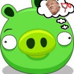 Donald Trump In Angry Birds | image tagged in memes,angry birds pig,how i think i look | made w/ Imgflip meme maker