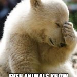 racism | ISN'T THIS SAD EVEN ANIMALS KNOW THAT RACISM ISN'T RIGHT | image tagged in memes,facepalm bear | made w/ Imgflip meme maker