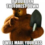 Smokey's less often heard yet more aggressive message | IF YOU BURN THE FOREST DOWN I WILL MAUL YOUR ASS | image tagged in smokey bear | made w/ Imgflip meme maker