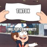 Sometimes I wonder why everyone on Img.flip hates tiktok so much | TIKTOK IMG.FLIP COMMUNITY | image tagged in gravity falls meme | made w/ Imgflip meme maker