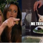 salad cat | KAREN ME TRYING TO HELP | image tagged in salad cat | made w/ Imgflip meme maker