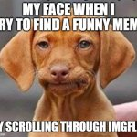 Frustrated dog | MY FACE WHEN I TRY TO FIND A FUNNY MEME BY SCROLLING THROUGH IMGFLIP | image tagged in frustrated dog | made w/ Imgflip meme maker