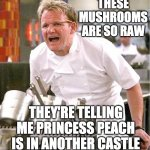 Feels good to be back on the fun stream | THESE MUSHROOMS ARE SO RAW THEY'RE TELLING ME PRINCESS PEACH IS IN ANOTHER CASTLE | image tagged in memes,chef gordon ramsay,funny,mushrooms,mario,princess peach | made w/ Imgflip meme maker