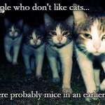 Wrong Neighboorhood Cats Meme | People who don't like cats... ...were probably mice in an earlier life. | image tagged in memes,wrong neighboorhood cats | made w/ Imgflip meme maker