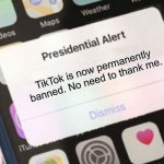 Yay! | TikTok is now permanently banned. No need to thank me. | image tagged in memes,presidential alert | made w/ Imgflip meme maker