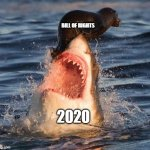 Travelonshark Meme | BILL OF RIGHTS 2020 | image tagged in memes,travelonshark | made w/ Imgflip meme maker