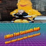 Cursed Big Bird from Sesame Street | image tagged in i miss ten seconds ago,big bird,sesame street,funny,cursed image,memes | made w/ Imgflip meme maker