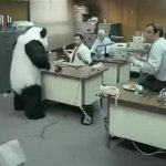 Panda Cheese Destroy Computers GIF Template