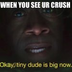 Tiny dude is big now | WHEN YOU SEE UR CRUSH | image tagged in tiny dude is big now | made w/ Imgflip meme maker