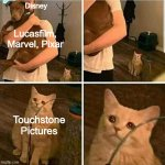 Disney forgot about Touchstone... | Disney Touchstone Pictures Lucasfilm, Marvel, Pixar | image tagged in sad cat holding dog,disney,dank memes,fresh memes,memes,funny | made w/ Imgflip meme maker