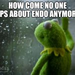 kermit window | HOW COME NO ONE RAPS ABOUT ENDO ANYMORE? | image tagged in kermit window | made w/ Imgflip meme maker