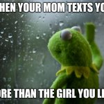 kermit window | WHEN YOUR MOM TEXTS YOU MORE THAN THE GIRL YOU LIKE | image tagged in kermit window | made w/ Imgflip meme maker