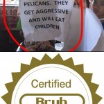 Sign showing please do not feed the pelicans.............. | image tagged in certified bruh moment,funny,memes,meme,signs,pelican | made w/ Imgflip meme maker