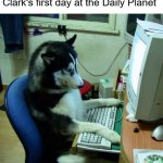 Tom Welling is a husky | Clark's first day at the Daily Planet | image tagged in memes,i have no idea what i am doing,tom welling,smallville,clark kent,daily planet | made w/ Imgflip meme maker