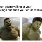 Oops. | When you're yelling at your siblings and then your crush walks by | image tagged in no this never happened | made w/ Imgflip meme maker