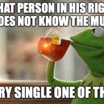 What person in his right mind does not know the muppets? | WHAT PERSON IN HIS RIGHT MIND DOES NOT KNOW THE MUPPETS? EVERY SINGLE ONE OF THEM. | image tagged in kermit sipping tea,kermit,muppets,sane,right mind,insane | made w/ Imgflip meme maker