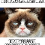 Title image | I LOVE 2020. I CAN STAY HOME AND AWAY FROM PEOPLE AND NOBODY CAN SAY I'M ANTI-SOCIAL. THANK YOU COVID FOR GIVING ME A GREAT EXCUSE NOT TO VI | image tagged in memes,grumpy cat not amused,grumpy cat,funny,covid-19 | made w/ Imgflip meme maker