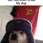 OUR FOOD | Me: Sits down to eat My dog: | image tagged in russian doge | made w/ Imgflip meme maker